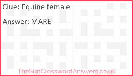 Equine female Answer