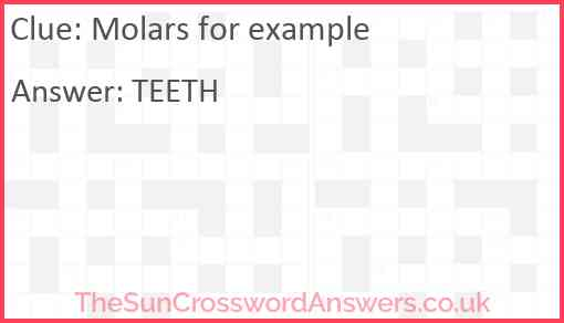 Molars for example Answer