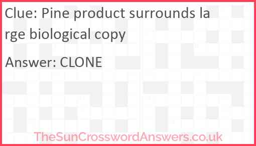 Pine product surrounds large biological copy Answer
