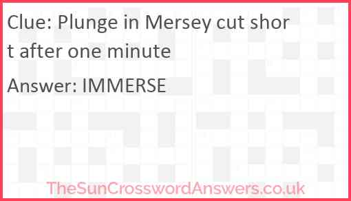 Plunge in Mersey cut short after one minute Answer