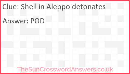 Shell in Aleppo detonates Answer