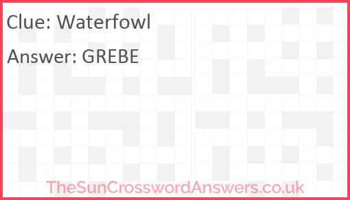 Waterfowl Answer