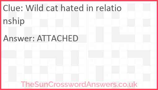 Wild cat hated in relationship Answer