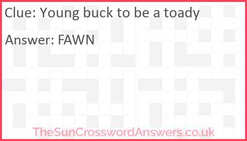 Young buck to be a toady Answer